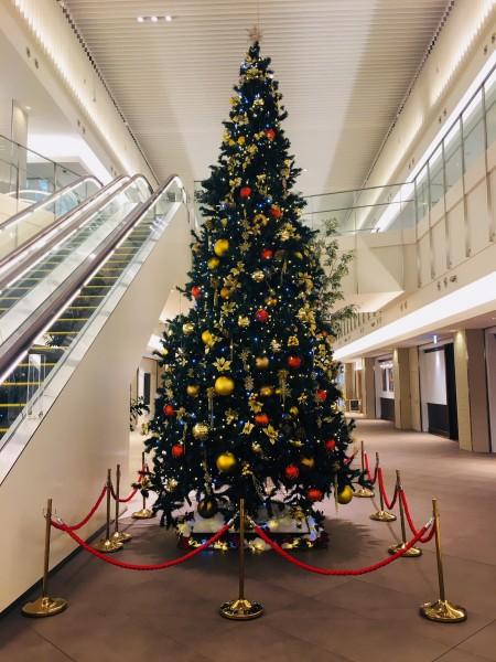 館内に6メートルのツリーが登場!